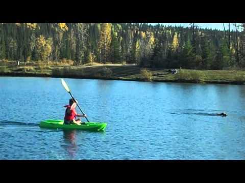My Lifetime Wave Kayak
