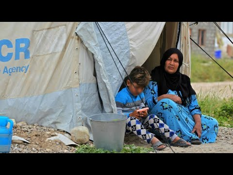 Number of global refugees at an all-time high, says UN