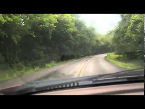 Oh Junk!   Guy's Reaction To Hitting A Deer With His Car