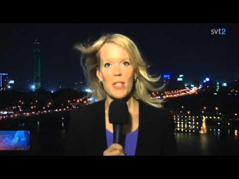 """""""Creepers on the Bridge"""" on Aktuellt, Swedish National TV News"""