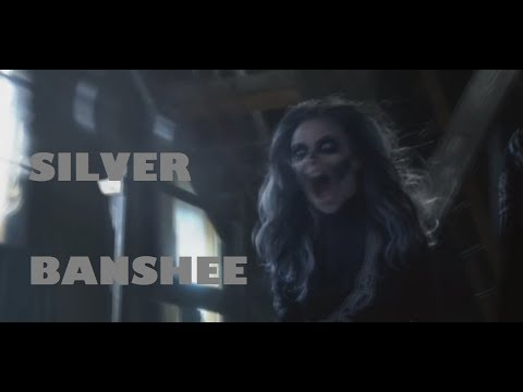All Silver Banshee Sonic Scream Scenes [HD]
