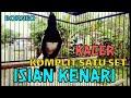 Kacer Isian Kenari Komplit Satu Set Full Jernih Cocok Untuk Masteran Murai Batu Dan Cucak Hijau  Mp3 - Mp4 Download