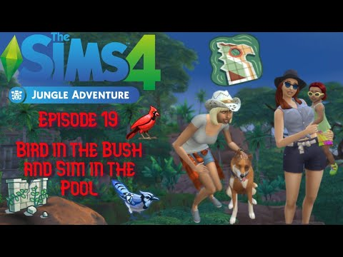Sims 4 Jungle Adventures Episode 19 Bird in the Bush Sim in the Pool |