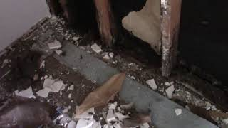 Water penetrating a brick wall and rotted out sill plate