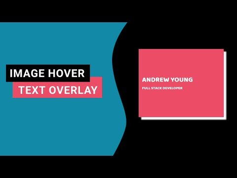 Pure CSS Animated Text Overlay On Hover | Css Image Hover Effects
