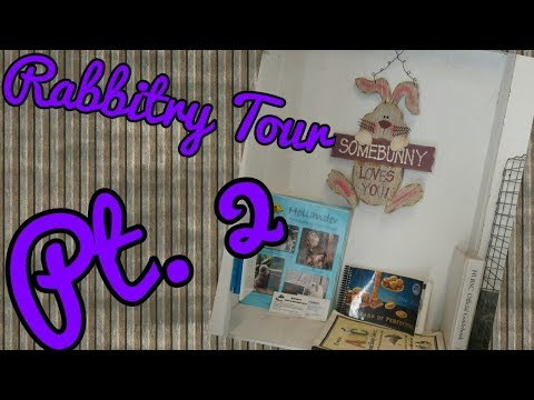Holland Lop Rabbitry Tour || pt 2 - Organization and Layout