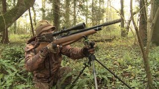 The Airgun Show – squirrel hunt with shooting sticks, PLUS Air Arms targets on test