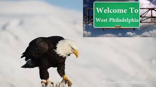 Fresh Eagle of Bel-Air
