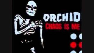 Watch Orchid Aesthetic Dialectic video