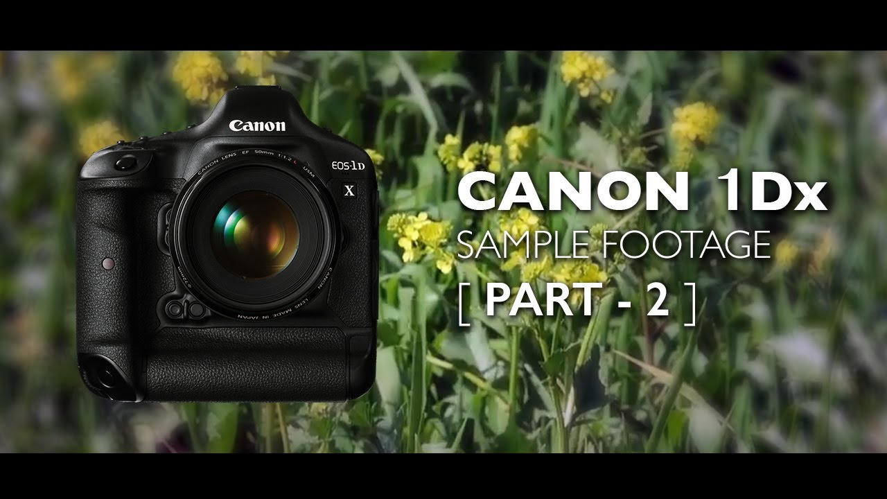 Canon:eos-1d x mark ii |sample images & movies.