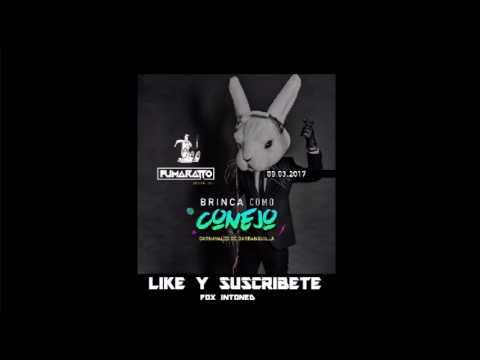 Brinca Como Conejo - Carnavales de Barranquilla - Fumaratto Ferroso 09 Marzo 2017