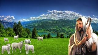 Chúa Chăn Nuôi Tôi - Thánh Vịnh 22 - Phanxicô