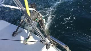 Solo sailing JOD35 with MrVee Y&B wind vane