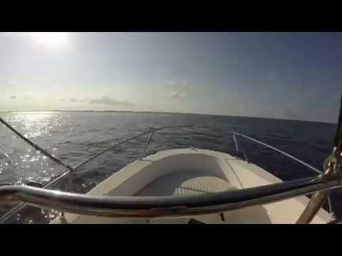 Bimini trip solo 18ft Whaler