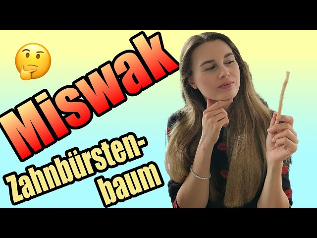 Miswak   Zahnbürstenbaum   Vergleich Tepe & Curaprox   DoctorAmi