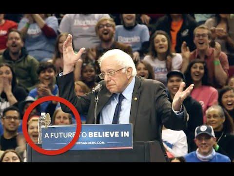 Bernie Sanders Visited By Bird At Portland Rally Crowd