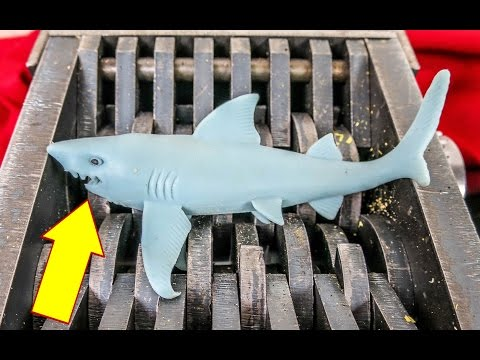 SHREDDING a SHARK! SQUISHY TOYS GET SHREDDED. What's Inside?