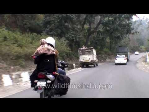 Driving through Rajaji National Park on the route to Dehradun