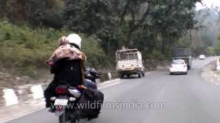 Driving through Rajaji National Park on the route to Dehradun