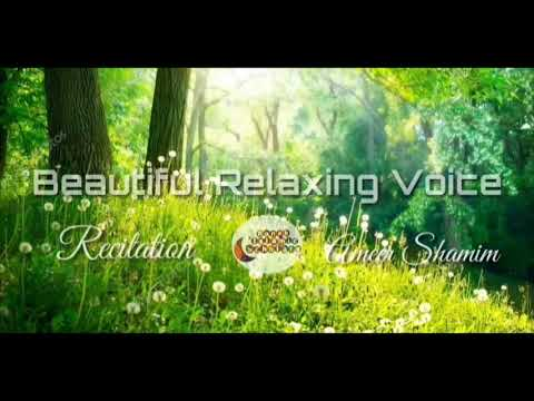 1 HOUR Beautiful Relaxing Voice By Ameer Shamim