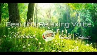 Video 1 HOUR Beautiful Relaxing Voice By Ameer Shamim download MP3, 3GP, MP4, WEBM, AVI, FLV November 2018