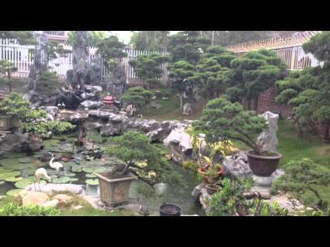 Vườn cây cảnh đẹp-Mơi nhất 2014 của Vũ Gia Kì Viên.