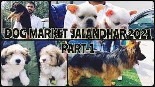 Wholesale Dog Market at Jalandhar Dog show 2021 February  PART 1 | Gold Medal Kennels