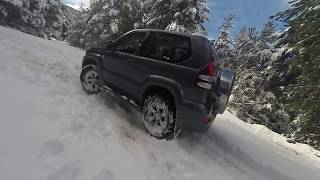 Subaru Forester vs Toyota Land Cruiser