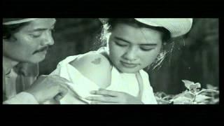 Thăm Huế- NSND Thu Hiền [HD]