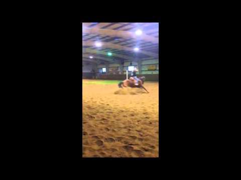 Horse Left Turn (+slow motion) Kind of Wide