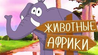ЖИВОТНЫЕ АФРИКИ! Учим животных для самых маленьких на русском! Развивающие мультики про животных