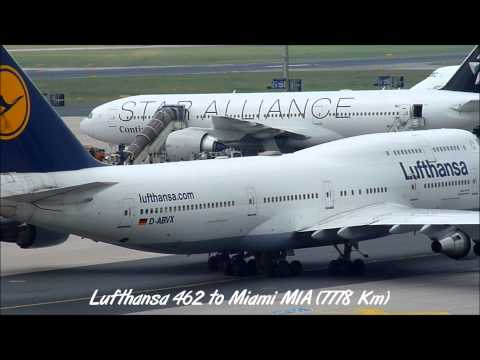 Star Alliance at Frankfurt International Airport