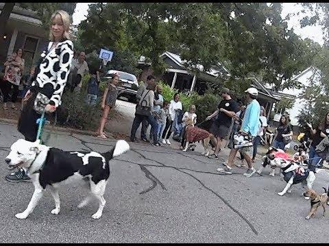 Athens GA Barkfest Dog Parade October 2019