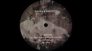 Pjotr G & Dubiosity  - Circle In A World Of Squares [LATFRAGV001]