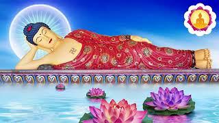 Phiền Não Đau Khổ Là Do Đâu   Nghe Lời Phật Dạy Để Lìa Khổ Được Vui