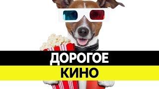 Самые ДОРОГИЕ ФИЛЬМЫ в России. Самое высокобюджетное российское кино!