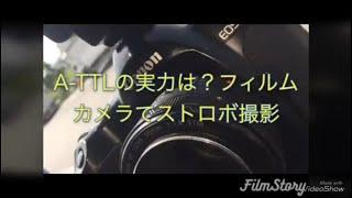 頭ボサボサですんませんm(._.)mキャノンのフィルムカメラでストロボ撮影...