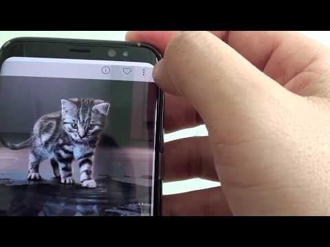 Samsung Galaxy S8: How To Download More Free Background Wallpaper