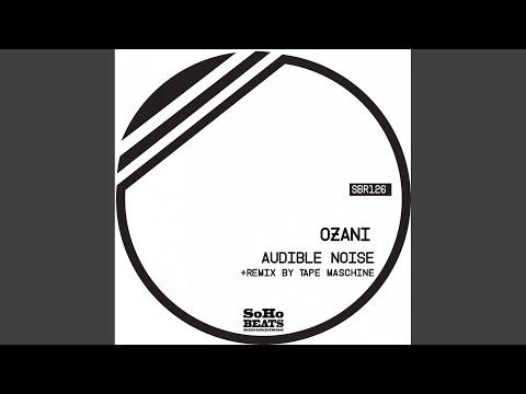 Audible Noise (Original Mix)