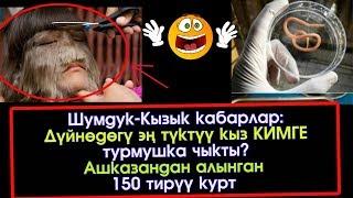 Шумдук кабар: Дүйнөдөгү эң түктүү кыз КИМГЕ турмушка чыкты?   Акыркы Кабарлар