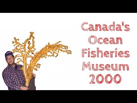 Canada's Ocean Fisheries Museum
