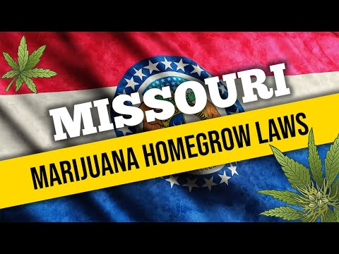 Missouri Marijuana Laws for Home Cultivation and Medical Use in 2021