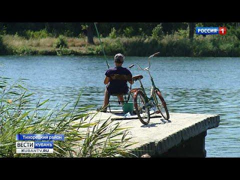 В пруду Тихорецка запретили купание из-за сомнительного качества воды