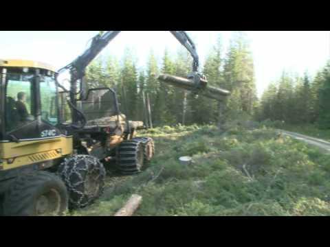 Eco Log 574C Forwarders Forestry Logging