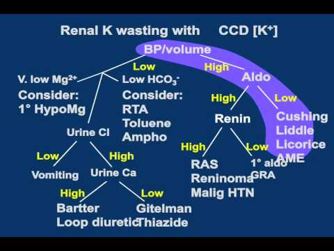 Internal medicine board review acid-base and electrolytes disorders clinical cases part2