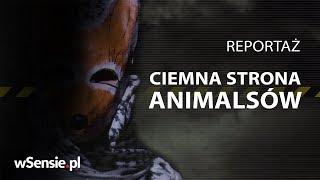 Ciemna strona Animalsów. Co organizacje prozwierzęce chcą przed Tobą ukryć?