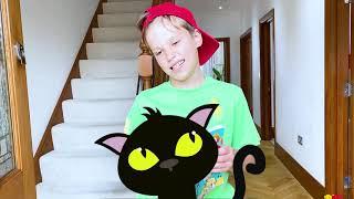 Макс присматривает за котиками Кати