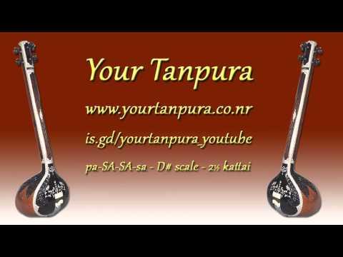 Your Tanpura - D# Scale - 2.5 kattai