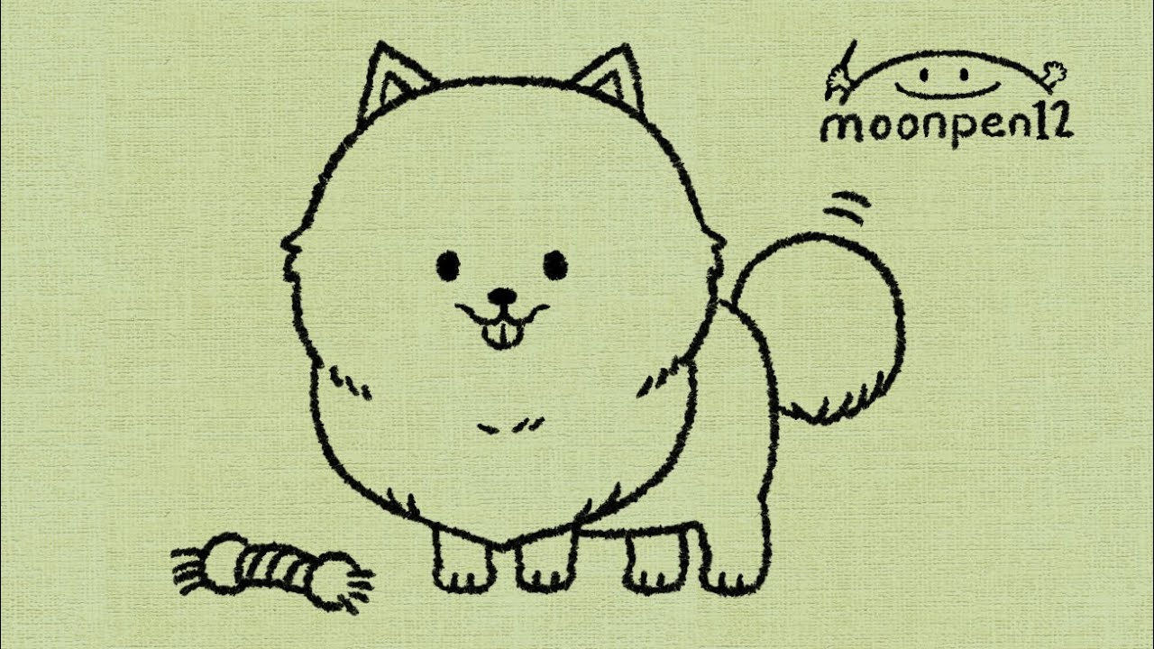 how to draw pomeranian