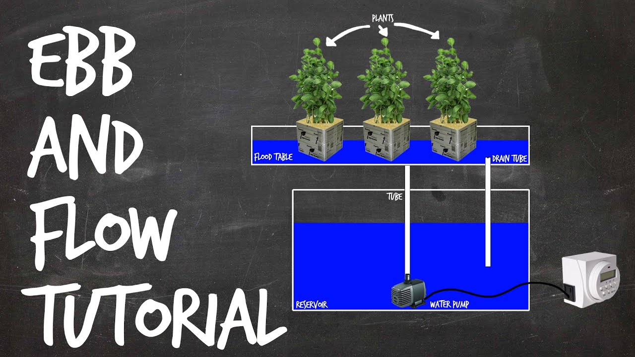 how to set up an ebb and flow hydroponics system tutorial. Black Bedroom Furniture Sets. Home Design Ideas